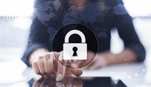 Prevent Unauthorized Access Company Data