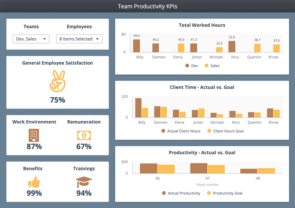 dashboard-examples-hr-team-productivity
