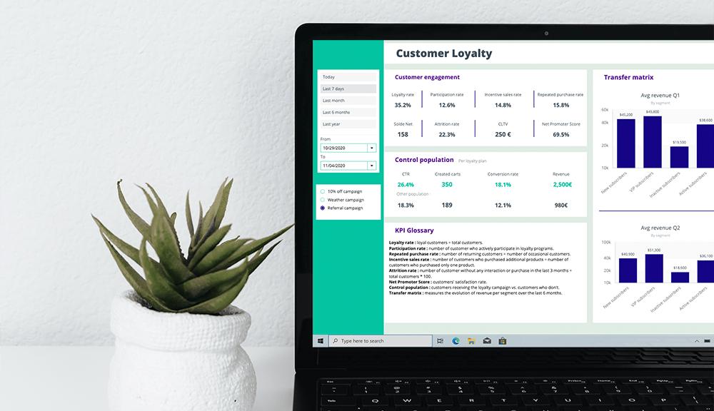 Data Visualization Customer Loyalty