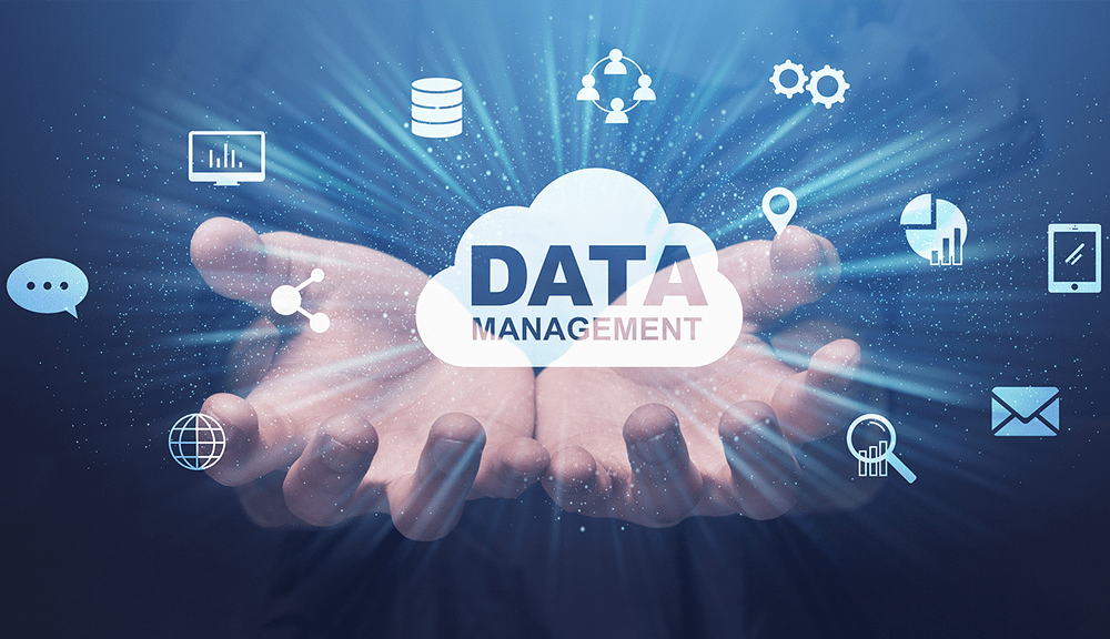 Data Management For Success
