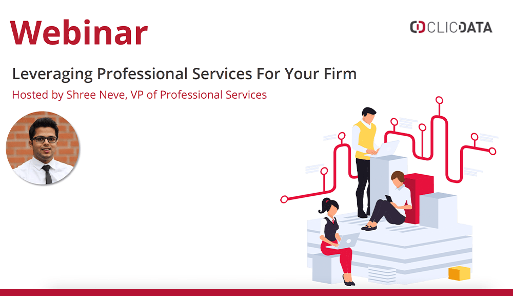 webinar professional services