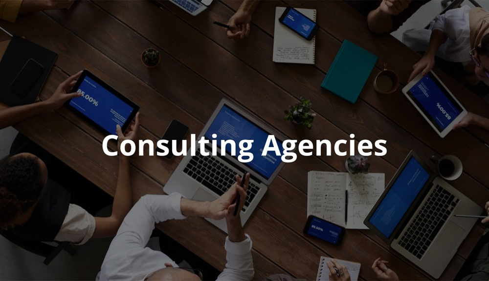 consulting agencies case study